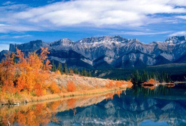 该公园是北极熊和其他动物, 包括狼,驼鹿,许多珍稀鸟类野生动物的所在